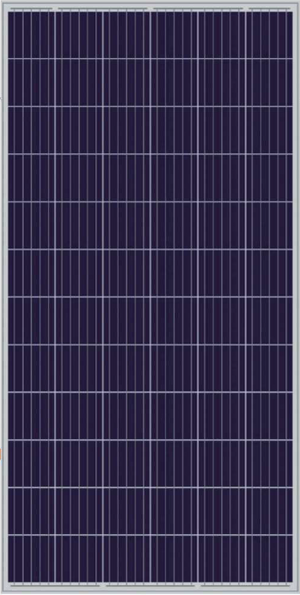 The Sun Pays - 330W Poly PERC 5BB Solar Panel