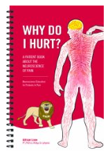 Why Do I Hurt? - Spiral Book