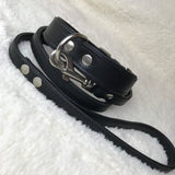 Black Lead and Collar Set