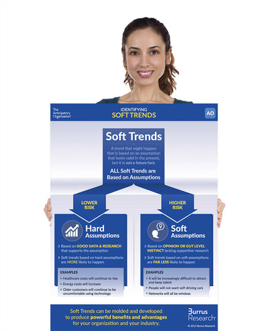 "Soft Trends - Individual Laminated Poster 18""x24"""
