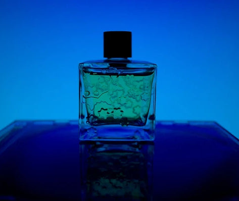 Bleu de Chanel Fragrance Oil
