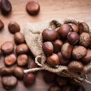 Chestnuts & Brown Sugar Fragrance Oil for Candle Making