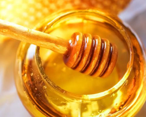 Honey Fragrance Oil for Candles, Soaps, & Cosmetics