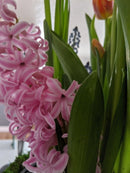 Hyacinth best wholesale candle fragrances