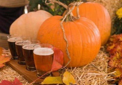 Pumpkin Lager - Fall Beer Fragrance Oil