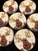 Rudolph the Red Nose Reindeer Bath Bomb