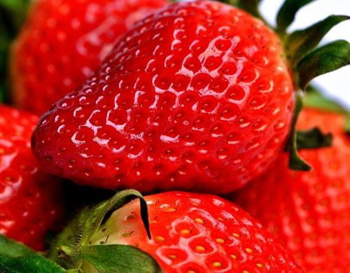 Fresh Strawberry Fragrance Oil - Create Your Own Candle Fragrances