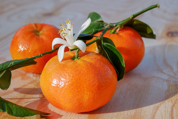 Tangerine Sunshine Fragrance Oil