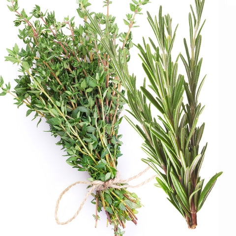 White Thyme Rosemary Fragrance