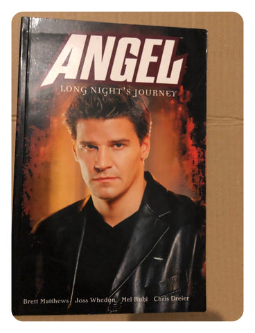 Angel: Long Nights Journey (Paperback Graphic Novel 2002)