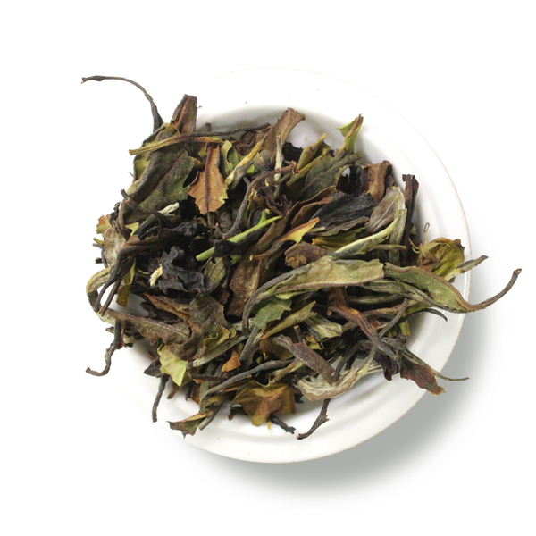 White Tea Elder Pom