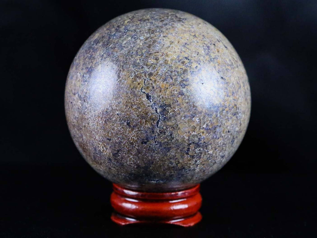 XL 59mm Polished Plesiosaurus Cretaceous Dinosaur Era Fossil Sphere Ball Free COA & Stand - Fossil Age Minerals