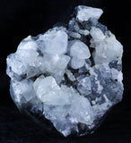 NATURAL ROCK CRYSTAL GROUPING OF QUARTZ POINTS CLUSTER FROM INDIA 11OZ Fossil Age Minerals