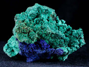 Azurite Crystals & Malachite On Matrix Very Colorful Mineral Specimen Morocco 2.9 Inches Long - Fossil Age Minerals