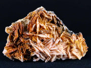 Sparkly Orange Vanadinite Crystals On Orange Barite Blades Mineral Morocco 6.3 Ounces - Fossil Age Minerals