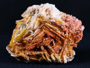 Sparkly Orange Vanadinite Crystals On Orange Barite Blades Mineral Morocco 3.1 Ounces - Fossil Age Minerals