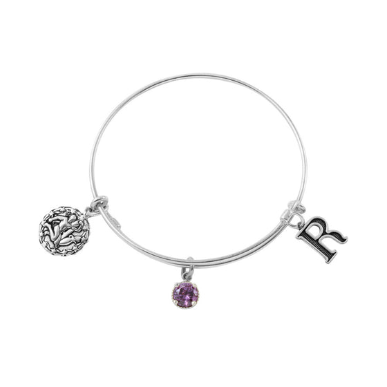 Sterling Silver Expandable Bangle Choose Your Zodiac Initial and Birthstone CZ Charm Made in USA