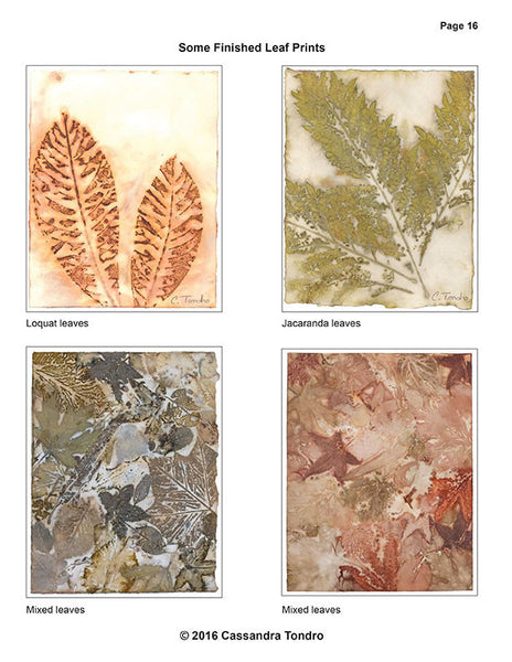 Cassandra Tondro Leaf Prints on Paper Tutorial