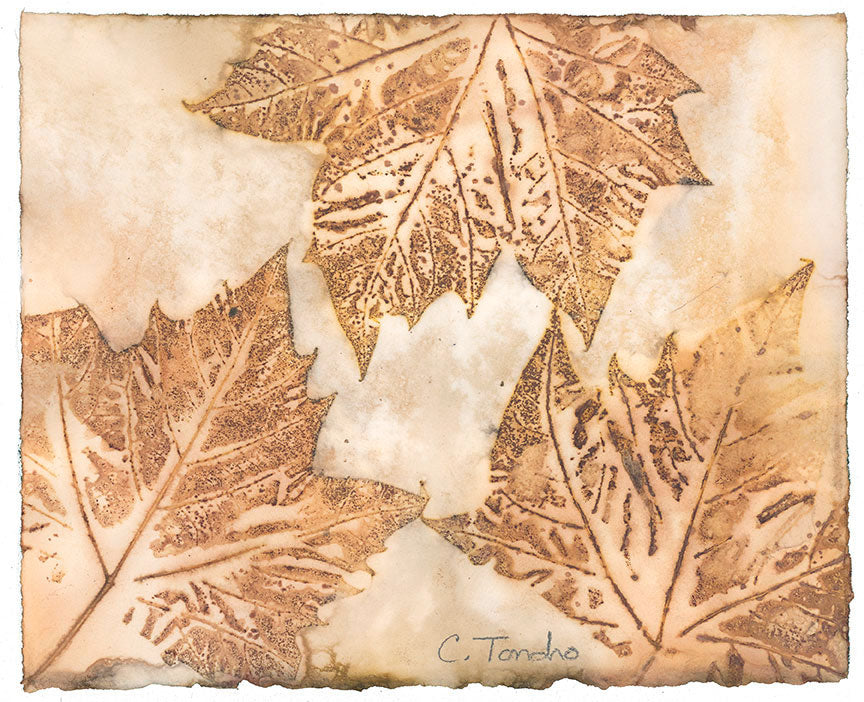 Cassandra Tondro London Plane leaf print contemporary art