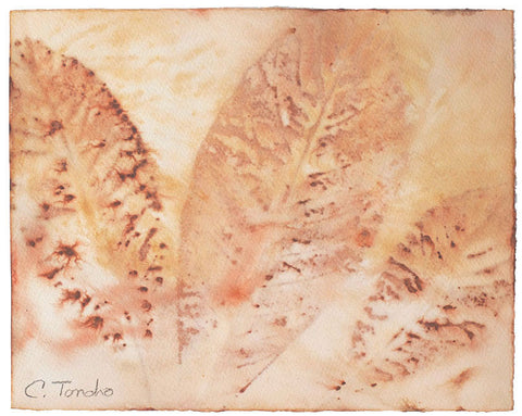 Cassandra Tondro Loquat leaf print abstract art