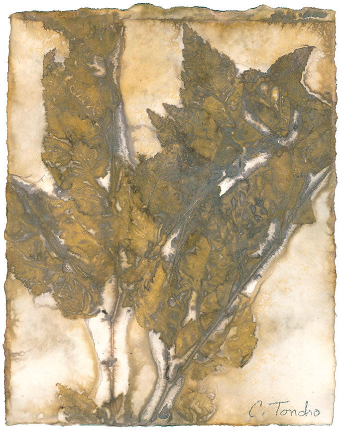 Cassandra Tondro Birch leaf print green art