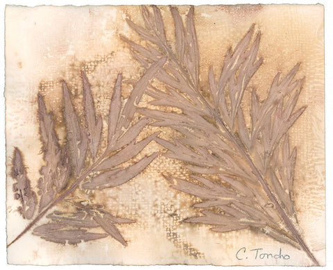 Cassandra Tondro Silk Oak leaf print natural art