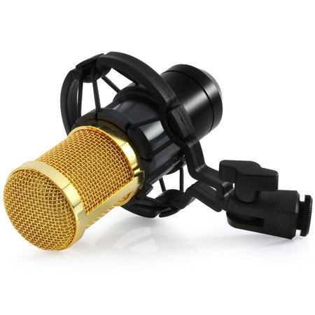Spectra FPS - BM 800 Condenser Recording Microphone Kit