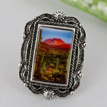 Silvertone Framed Southwest Scene Ring