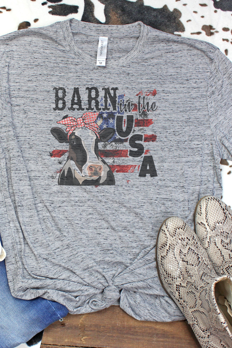 Barn In the USA Blizzard Jersey Short Sleeve T-Shirt