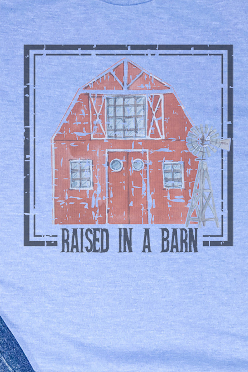 Raised In A Barn Unisex Blend Tee