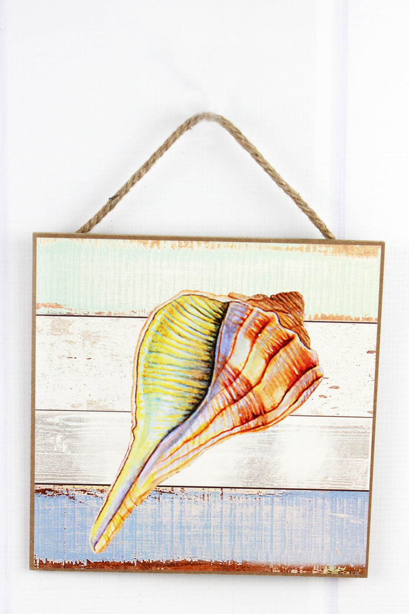 Limited Quantity! 8 x 8 Lightning Whelk Shell Wood Wall Art