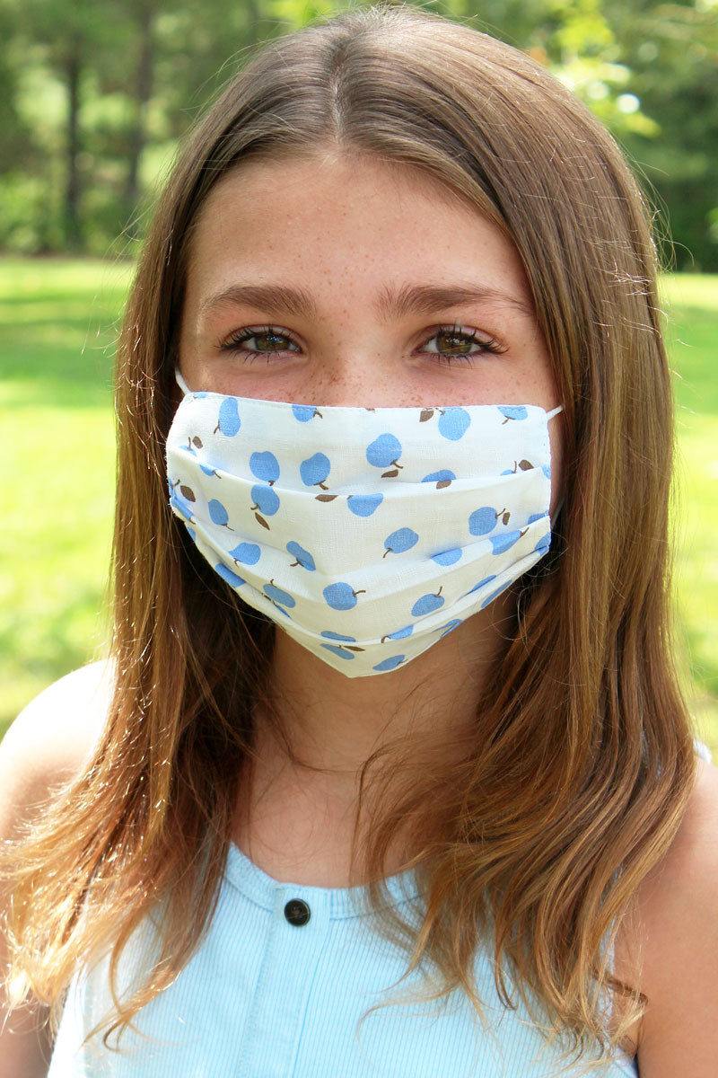 Kid's Blue Apple Two-Layer Pleated Fashion Face Mask