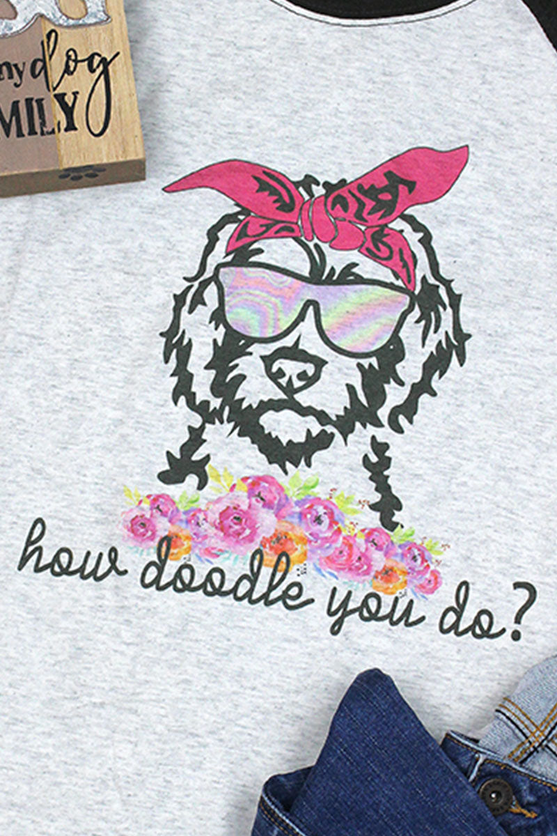 How Doodle You Do? Tri-Blend Unisex 3/4 Raglan