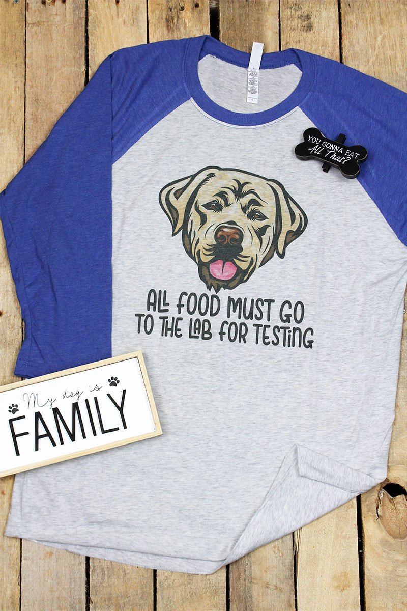 Lab For Testing Tri-Blend Unisex 3/4 Raglan