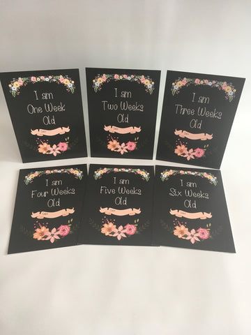 Weekly Journey Cards Chalkboard Floral  DD005