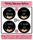Weekly Journey Stickers - Chalkboard Floral - DD053