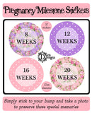 Pregnancy Journey Stickers - Bright Floral - DD556