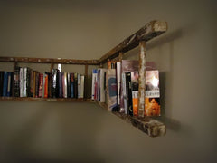 Upcycled Furniture Ideas / Ladder Bookcase