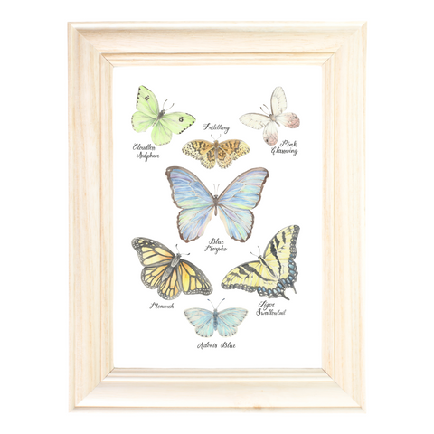 Butterfly Collection Art Print by Erica Catherine Gallery 209
