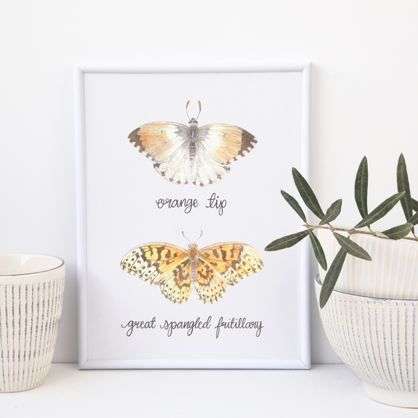 Orange Tip Butterfly and Great Spangled Fritillary Butterfly by Erica Catherine Gallery 209