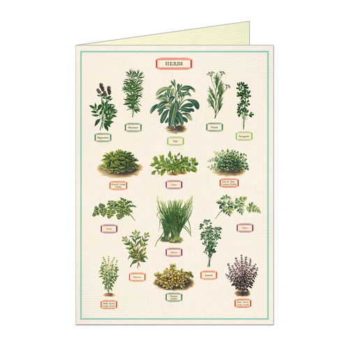 Vintage greeting card featuring illustrations of various herbs
