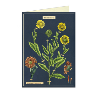 Vintage birthday card featuring herbarium flowers, on a navy blue background