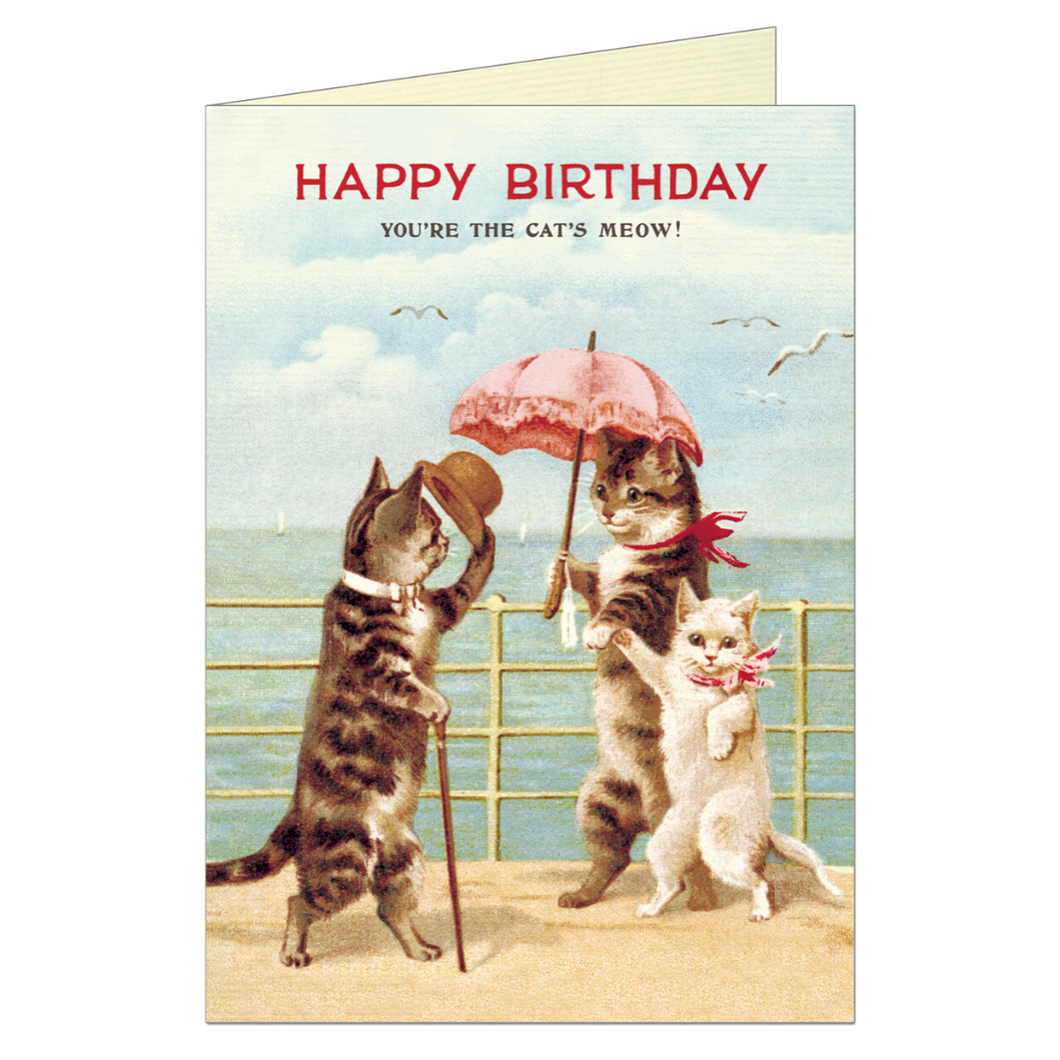 Vintage birthday card featuring a well dressed male cat waving his hat to two female cats, near the seaside