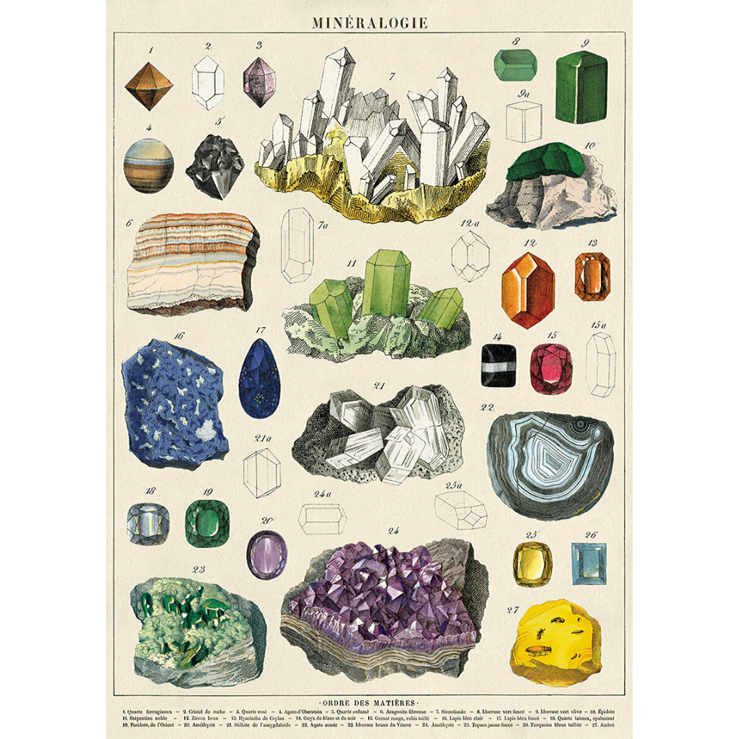 Cavallini poster adorned with vintage rock, geology, gem, and mineral illustrations.
