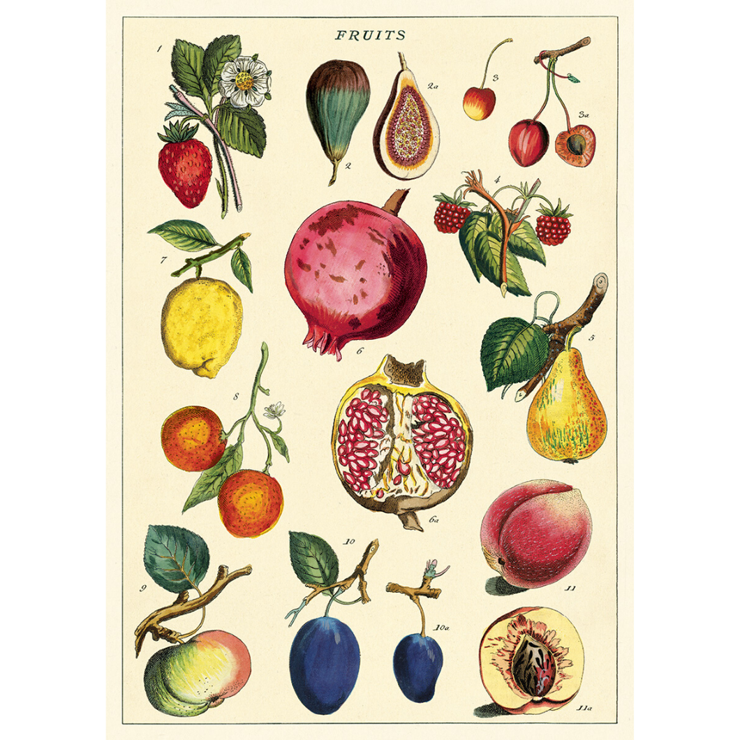 An art print and paper wrap which features various types of fruit