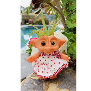 Troll Doll Airplant