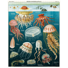 Load image into Gallery viewer, Cavallini & Co Jellyfish 1,000 Piece Puzzle