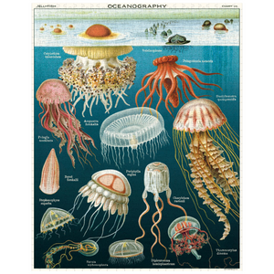 Cavallini & Co Jellyfish 1,000 Piece Puzzle