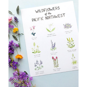 Print- Wildflowers of The Pacific Northwest
