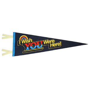 Wish You Were Here Pennant